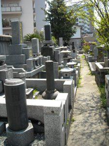 都会の墓なら